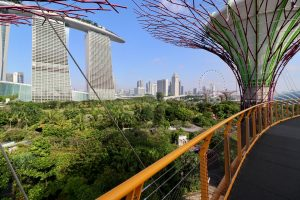 OCBC Skyway in den Gardens by the Bay, Singapur
