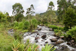 Fluss bei Salento, Kolumbien