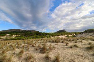 Landschaft in Llevant, Mallorca, Spanien