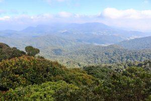 Blick über die Cameron Highlands, Malaysia