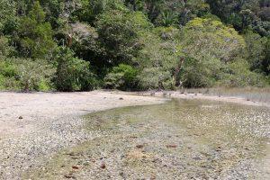 See im Nationalpark Penang, Penang, Malaysia