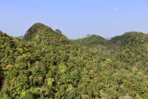 Berge auf Langkawi, Malaysia