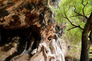 Felswand auf Rai Leh, Thailand