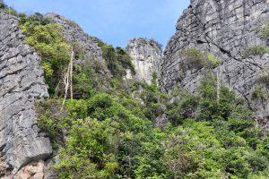 Felsen auf Ko Phi Phi Leh, Thailand