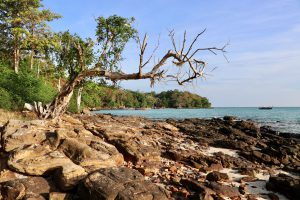 Strand auf Ko Phi Phi Don, Thailand