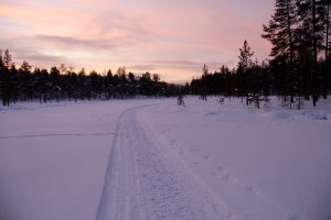 Polarnacht im Lemmenjoki-Nationalpark, Lappland, Finnland