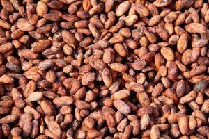 Kakaobohnen, Chuao, Aragua, Venezuela
