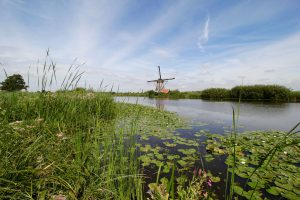 Mühle bei Kinderdijk, Südholland, Niederlande