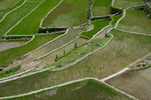 Reisterrassen von Banaue, Luzon, Philippinen
