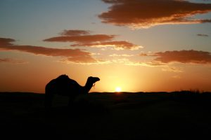 Sonnenuntergang in der Sahara, Tunesien